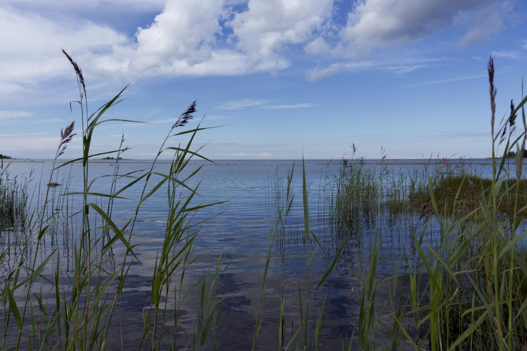 Kalajoen Matkahuolto